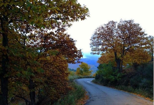 Otoño en la Serranía de Ronda