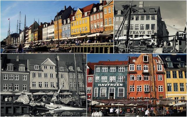 C79 Loleta Copenhagen 2