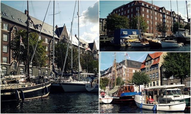 C79 Loleta Copenhague 5