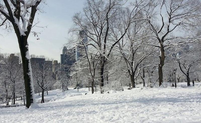 Nueva York blanco ¡Qué frío!