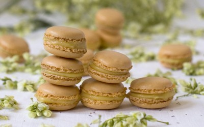 Macarons of mango. The best of the Axarquía