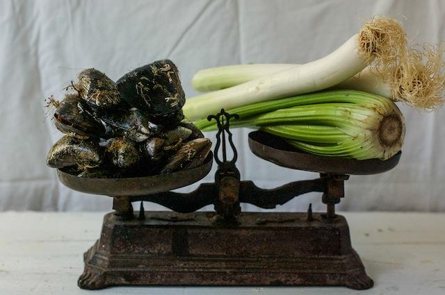 C190 mussels Belgian LOLETA 1 (1 of 1)