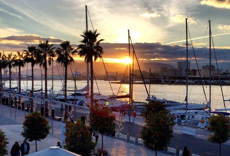 Ocho propuestas para comerte Málaga