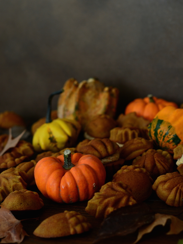 Bicocho calabaza otoño Loleta 1