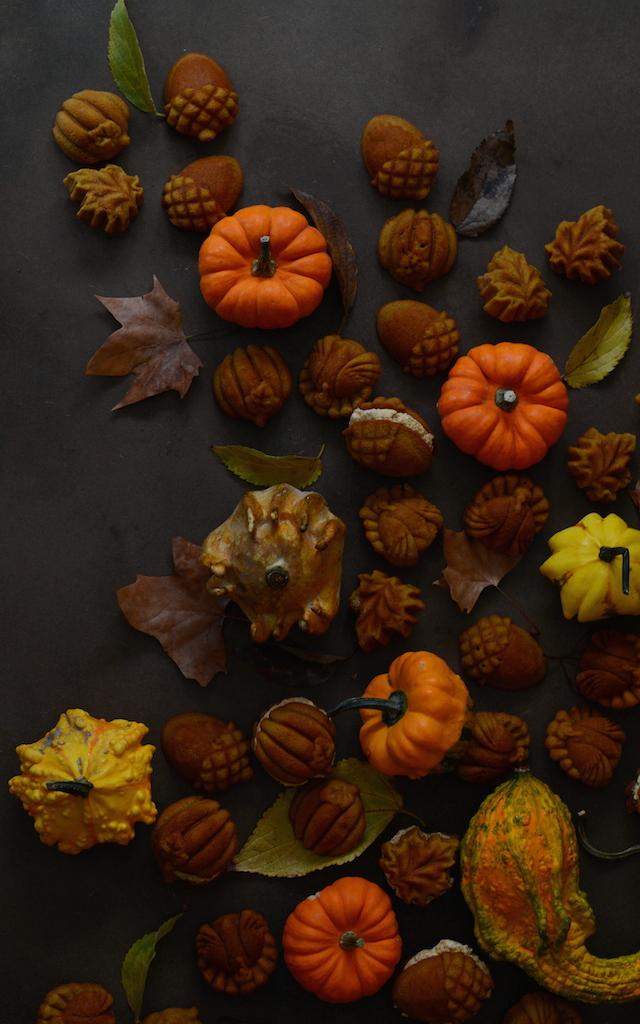 Bicocho calabaza otoño Loleta 3