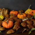 Bicocho calabaza otoño Loleta 0