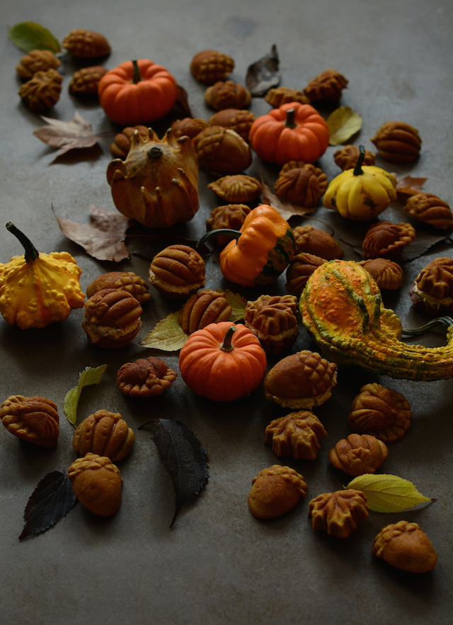 Bicocho calabaza otoño Loleta 2