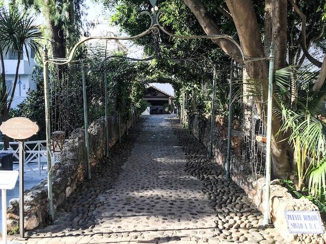 LOLETA bridge Roman 18 (1 of 1)