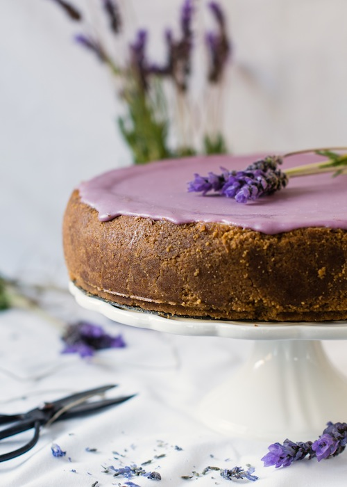 Lavender Cake 2 (1 of 1)